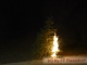 D--Feuerwehr-Bilder-2019-FJ 2019-01-18 Christbaum verbrennen_003